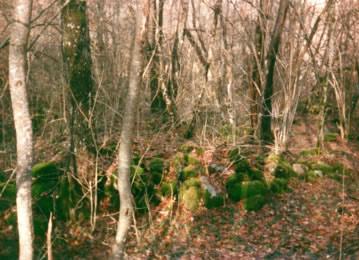 Antiche rovine sul pianoro della Megoia