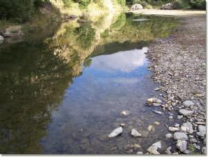 Un tratto del fiume Aveto