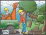 La filiera del bosco (disegno di Vittorio Serra)