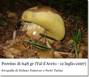 Porcino super (foto di Paolo Turina e Stefano Franzoso)